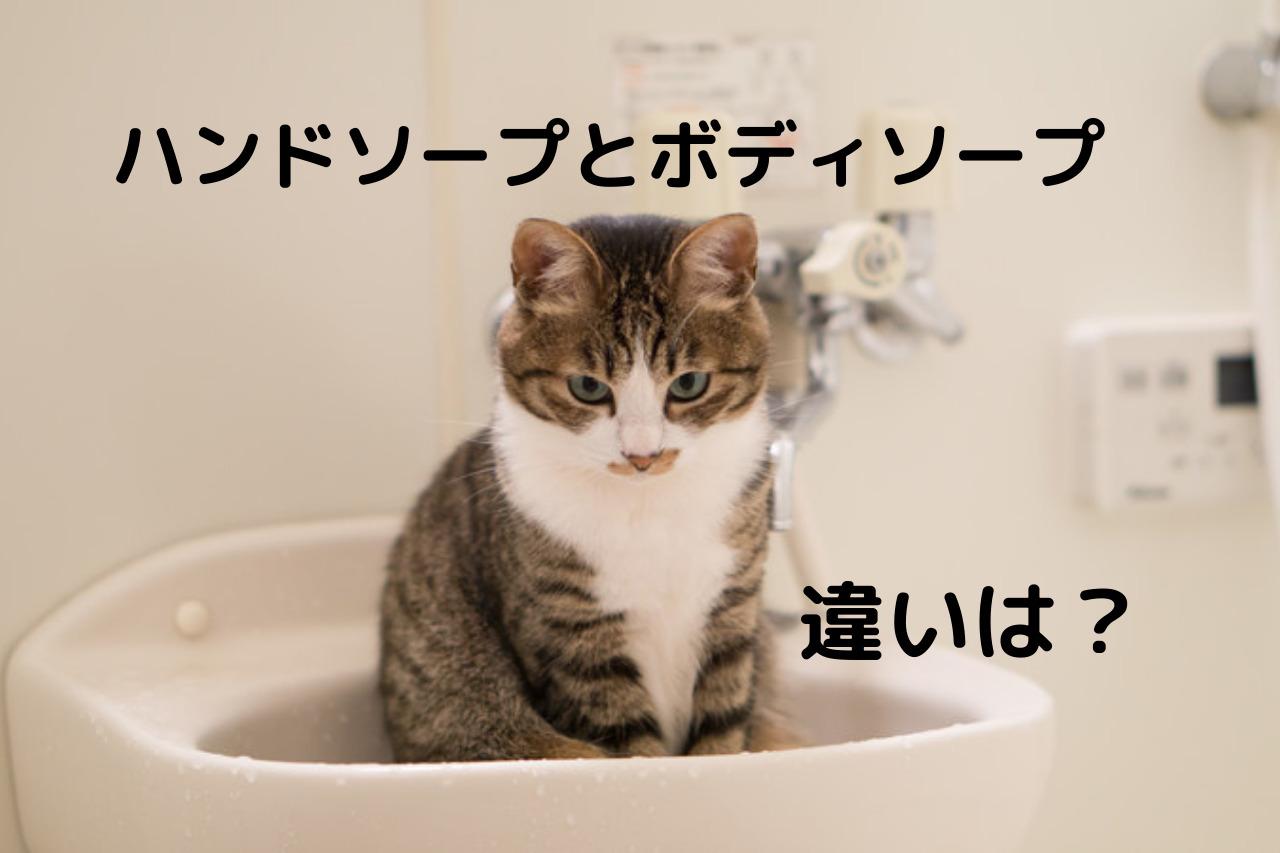 手洗い で ボディ ソープ